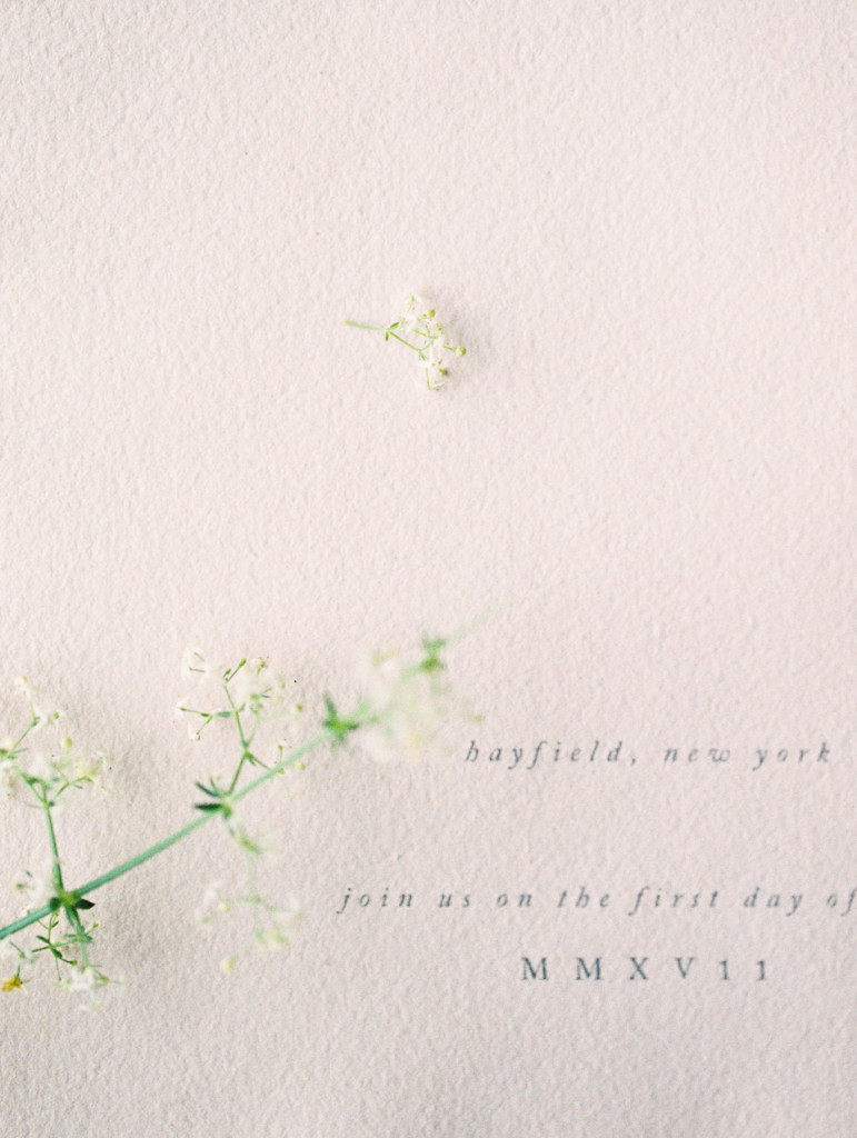 Hayfield - Flourish Calligraphy
